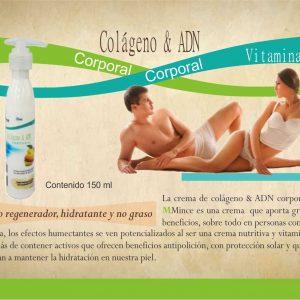 Colágeno & ADN corporal