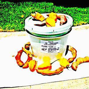 Pulpa Natural Tamarindo con Habanero en Cubeta de 4 Kilos