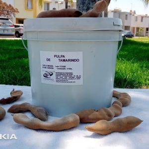 Pulpa Natural Tamarindo sin Azucar en Cubeta de 4 Kilos